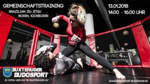 zweites Gemeinschaftstraining Ju Jutsu, BJJ, Kickboxen und Boxen