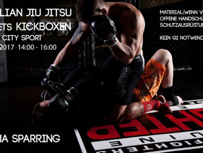 Sport verbindet. Gemeinschaftstraining BJJ & Kickboxen.